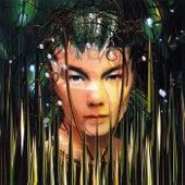 Bachelorette (Version 2) von Björk