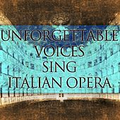 Unforgettable Voices Sing Italian Opera by Various Artists