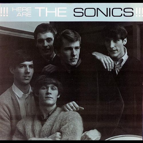 Play & Download Have Love Will Travel by The Sonics | Napster