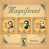 Play & Download Magnificent boxset by Various Artists | Napster