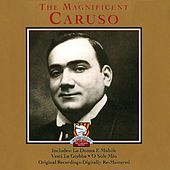 Play & Download The Magnificent Caruso by Enrico Caruso | Napster