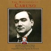 The Magnificent Caruso by Enrico Caruso