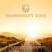 Tranquillity State by Various Artists