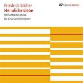 Play & Download Heimliche Liebe Romantische Musik für Chor und Orchester by Various Artists | Napster