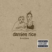 Play & Download B-Sides by Damien Rice | Napster