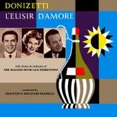 Play & Download Donizetti L'Elisir D'Amore by Orchestra del Maggio Musicale Fiorentino | Napster