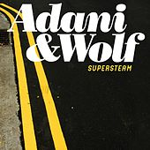 Supersteam by Adani & Wolf