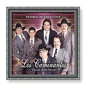 Play & Download Tesoros De Coleccion: Puras Ranchesras by Los Caminantes | Napster