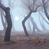 Play & Download Norr by Tingvall Trio | Napster
