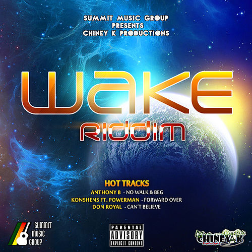 Wake Riddim by Various Artists