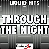 Through the Night (A Tribute to Drumsound and Bassline Smith) by Liquid Hits