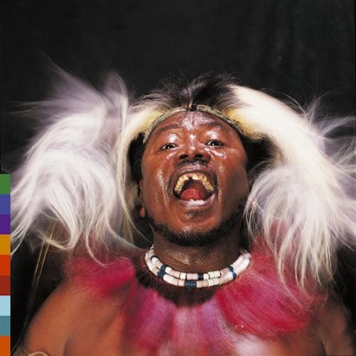 Play & Download Chibite by Hukwe Zawose   Napster