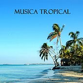Play & Download Musica Tropical (Fiesta Latina) by Musica Tropical Club | Napster