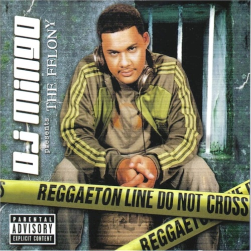 DJ Mingo Presents the Felony by D.J. Mingo