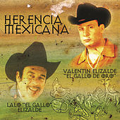 Play & Download Herencia Mexicana by Valentin Elizalde | Napster