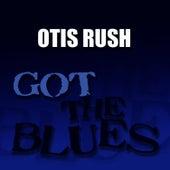 Got the Blues de Otis Rush