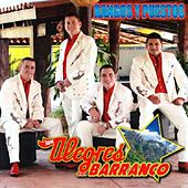 Play & Download Rangos Y Puestos by Los Alegres Del Barranco | Napster