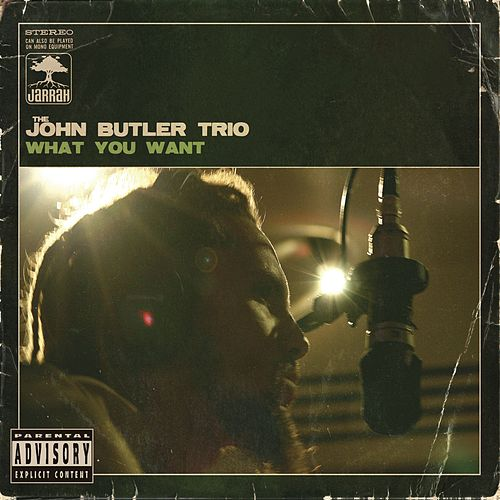 Play & Download What You Want by The John Butler Trio | Napster