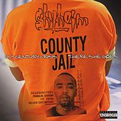 Play & Download 21st Century Crisis B/w There She Goes by Shyheim | Napster