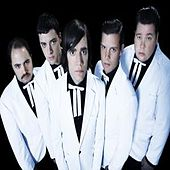 Play & Download Genepool Convulsions by The Hives | Napster