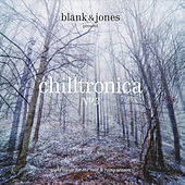 Chilltronica No.3 - Night Music for the Cold & Rainy Season von Various Artists