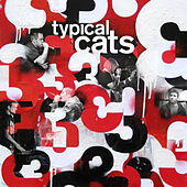 3 by Typical Cats