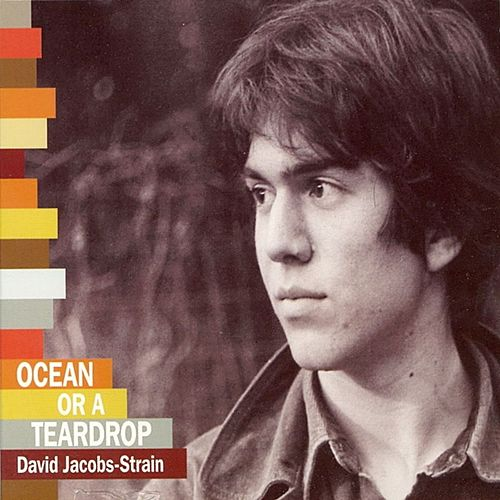 Ocean Or A Teardrop by David Jacobs-Strain