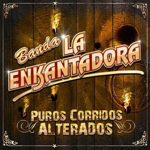 Puros Corridos Alterados by Banda La Enkantadora