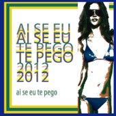 Ai Se Eu Te Pego 2012 by Various Artists