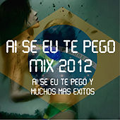 Play & Download Ai Se Eu Te Pego Mix 2012 by Various Artists | Napster