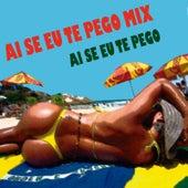Ai Se Eu Te Pego Mix by Various Artists