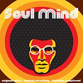 Soul Mind von Various Artists