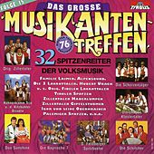 Play & Download Das große Musikantentreffen Folge 15 by Various Artists | Napster