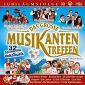 Das große Musikantentreffen - Folge 30 by Various Artists