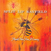 Play & Download Should Have Seen It Coming by Split Lip Rayfield | Napster