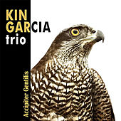 Play & Download Accipiter Gentilis by Kin Garcia Trio | Napster