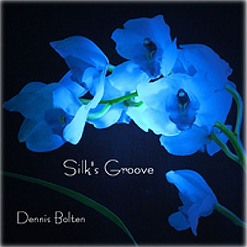 Play & Download Silk's Groove by Dennis Bolten | Napster