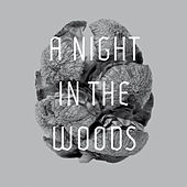 Play & Download A Night in the Woods by Tyler Friedman | Napster