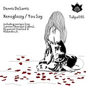 Play & Download Xenoglossy / You Say by Dennis DeSantis | Napster