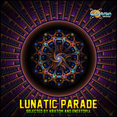 Lunatic Parade by Various Artists