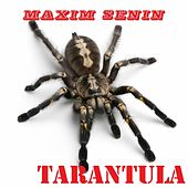 Play & Download Tarantula by Maxim Senin | Napster