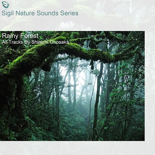 Rainy Forest (Sigil Nature Sounds Series) di Shinichi Onosaka