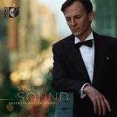 Still Sound by Bruce Levingston
