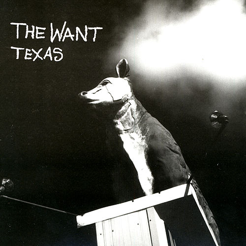 Play & Download Texas by The Want | Napster