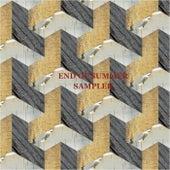 End Of Summer Sampler by Various Artists