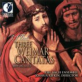 Play & Download Bach, J.S.: Cantatas - Bwv 12, 172, 182 (3 Weimar Cantatas) by Susanne Ryden | Napster
