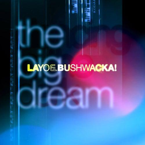 The Big Dream by Layo & Bushwacka!