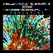 Play & Download Porcupine - Single by Iration | Napster