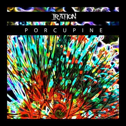 Porcupine - Single by Iration