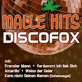 Play & Download Malle Hits Discofox by Various Artists | Napster